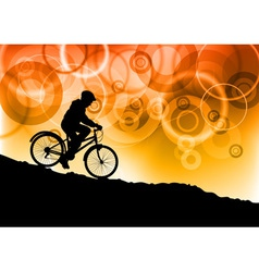bike by sunset vector image