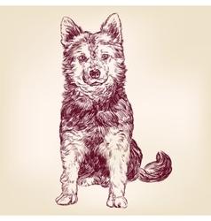 dog hand drawn llustration realistic sketch vector image vector image