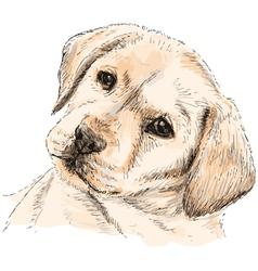Labrador Retriever 06 vector image