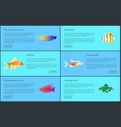 ocean and sea fishes set isolated on blue backdrop vector image