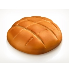 Round bread icon vector