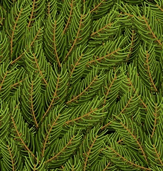 Spruce branch background FIR branch seamless vector image