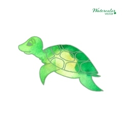 Turtle in cartoon style vector