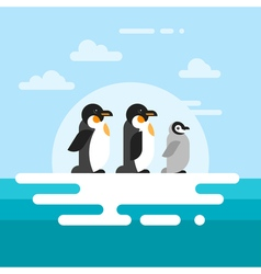 flat style of penguins on the glacier vector image