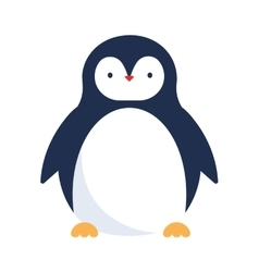 Cute penguin icon vector