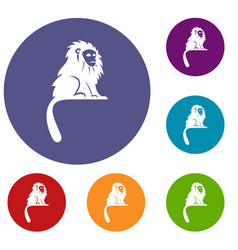 Hairy monkey icons set vector