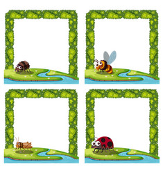 set of insect in frame vector image