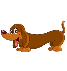 dachshund dog vector image