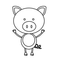 figure teddy pig icon vector image