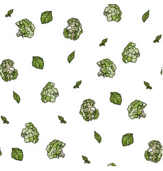broccoli seamless pattern on white background vector image
