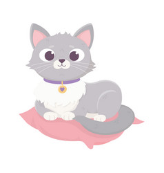 cute domestic cat resting in cushion pets vector image