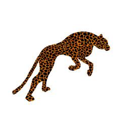 drawn jaguar leopard wild cat panther coloured vector image