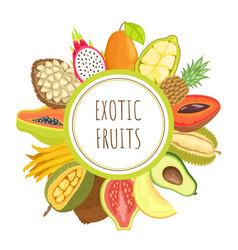 exotic fruits papaya mamey pitaya poster vector image