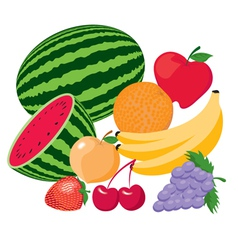 Fruit vector image vector image