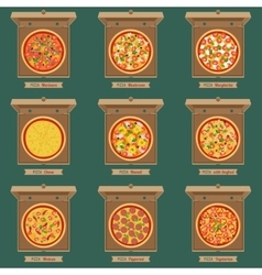 pizzas in opened cardboard boxes vector image