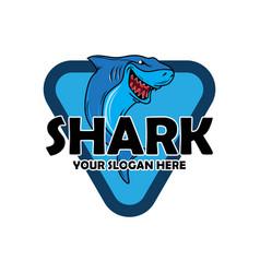 shark image vector image