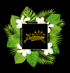 Summer card with frangipani flowers and green vector