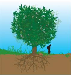 Tree and roots vector