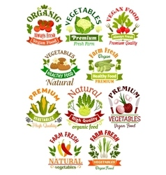 Vegetables labels set for food industry vector image