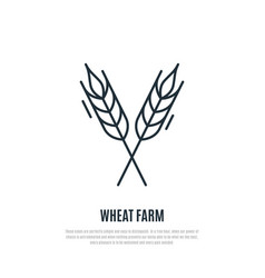 wheat spikelets line icon wheat farm symbol vector image