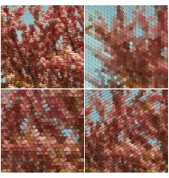 The tree with purple flowers Collection of vector image vector image