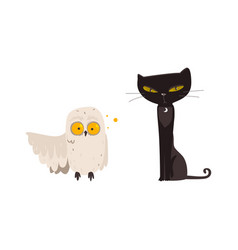 spooky black cat and white owl halloween objects vector image vector image