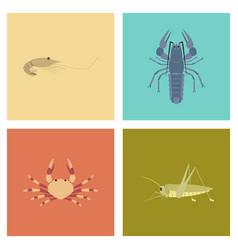assembly flat shrimp lobster crab vector image
