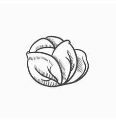 Cabbage sketch icon vector image
