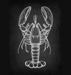 Chalk sketch lobster vector