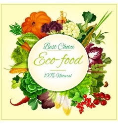 Eco food organic vegetables and fruits symbol vector image