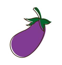 Eggplant vegetable nutrition food diet vector