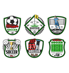 Soccer or football sport league championship label vector