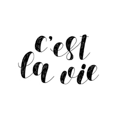C est la vie That is life Brush lettering vector image