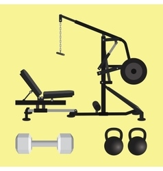 gym equipment with dumbell kettlebell and lat pull vector image