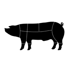 pork-cutting scheme vector image