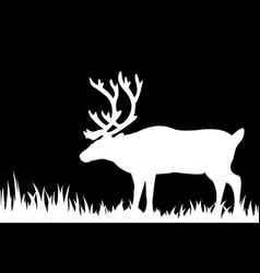 silhouette of deer in the grass vector image