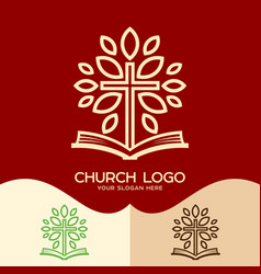 the cross and the open bible vector image vector image
