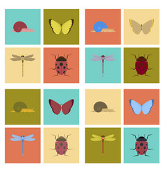 Assembly flat bug snail butterfly vector