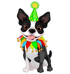 Boston Terrier Birthday vector image