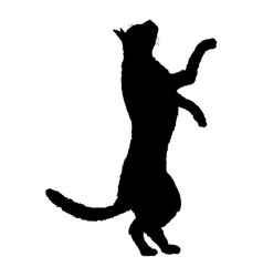 Cat on his hind paws silhouette black feline logo vector