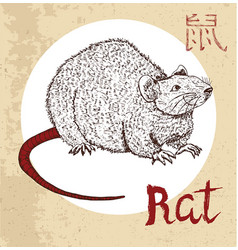 Chinese zodiac symbol of etching rat vector
