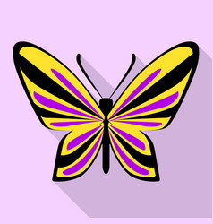 purple yellow butterfly icon flat style vector image