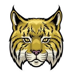 wildcat head vector image