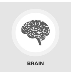 Brain flat icon vector image