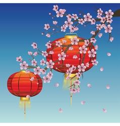 Chinese lantern with sakura branch vector
