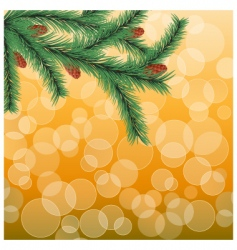 fir twig vector image
