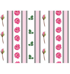 floral wallpaper with pink roses and stems pattern vector image