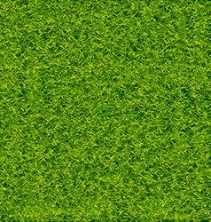 Green Soccer Grass Field vector image vector image