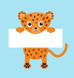 black funny jaguar cat hanging on paper board vector image