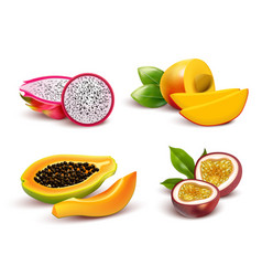 tropical fruits realistic set vector image vector image